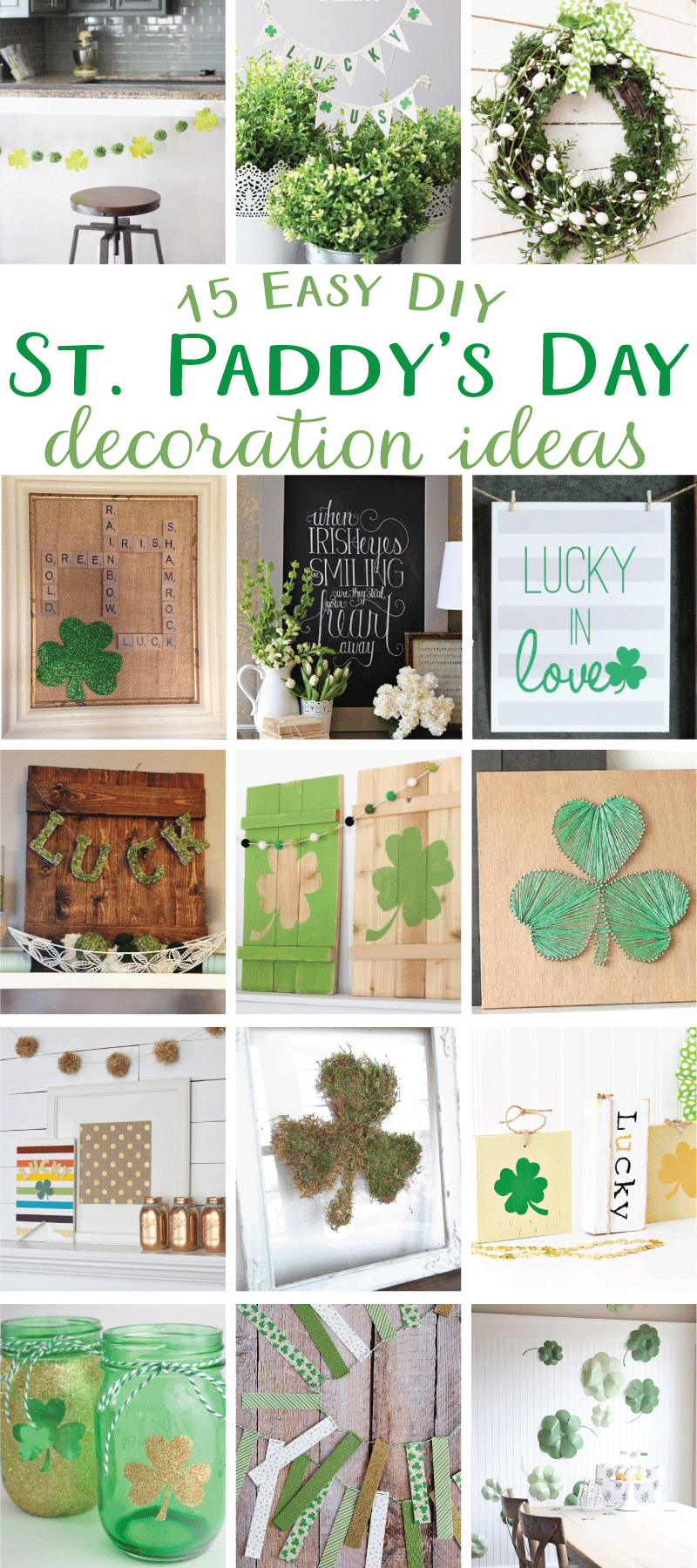 3 Easy Diy Storage Ideas For Small Kitchen: 15 Easy DIY St. Paddy's Day Decoration Ideas By Lindi Haws