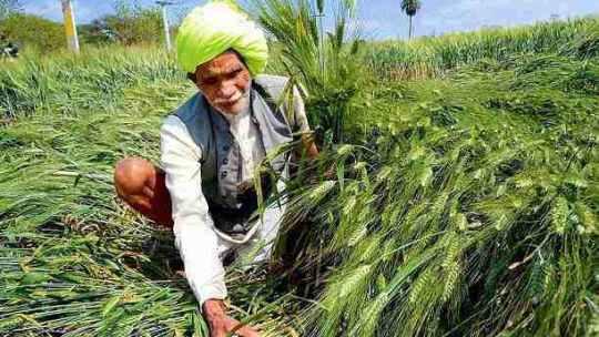 किसान पर कविता – Kisan Par Kavita in Hindi for Whatsapp and Facebook