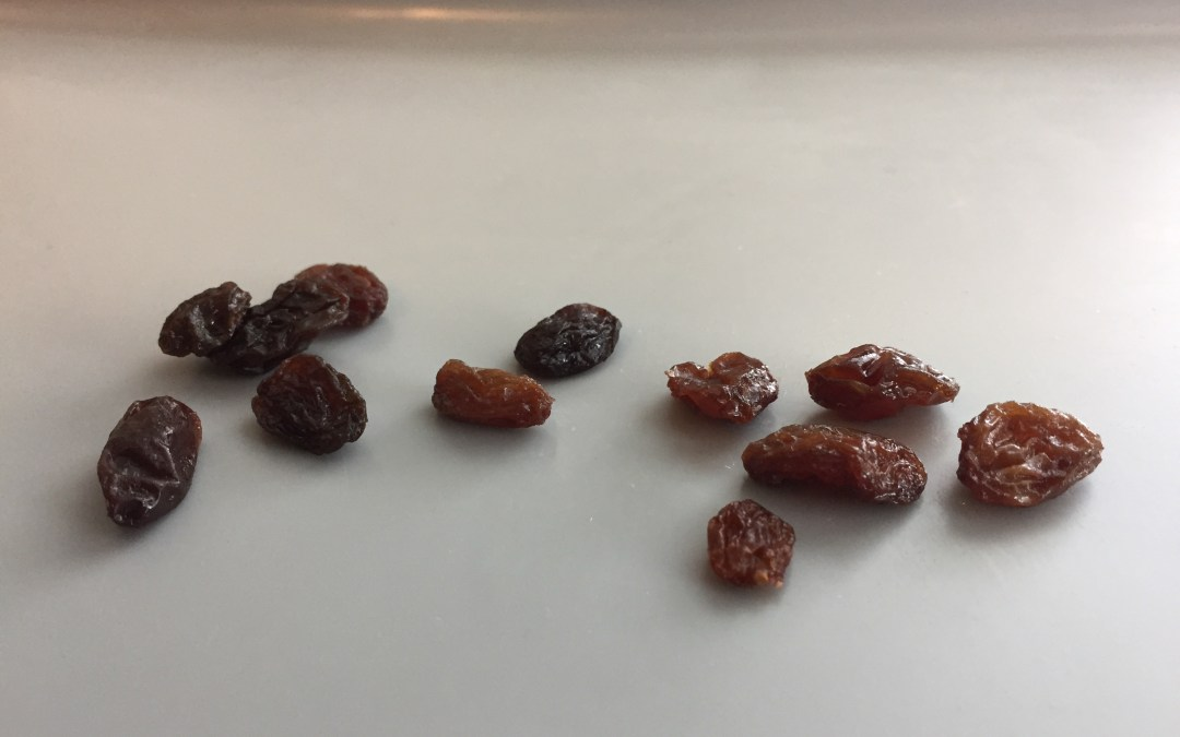 Raisins Give an Insight into Suffering