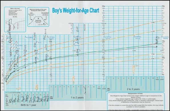 growth chart example