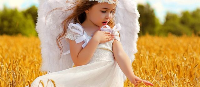 May love never cut off your wings