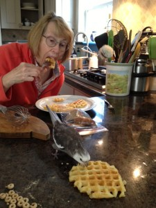 Project complete, a Grandma and her assistant enjoy a fresh waffle breakfast together.