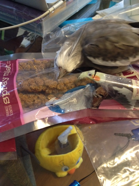 You can then commence to snacking until you are full (and have your large featherless assistant wrap up the rest for later).