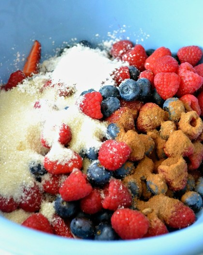 berry_cobbler_ingredients3