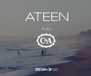ateen-para-cea-2-535x451