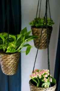 DIY Indoor Hanging Planters // Love & Renovations