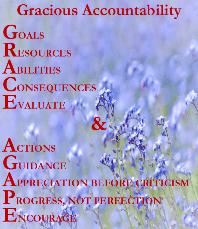 Gracious Accountability-2