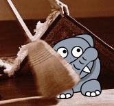 elephant under the rug