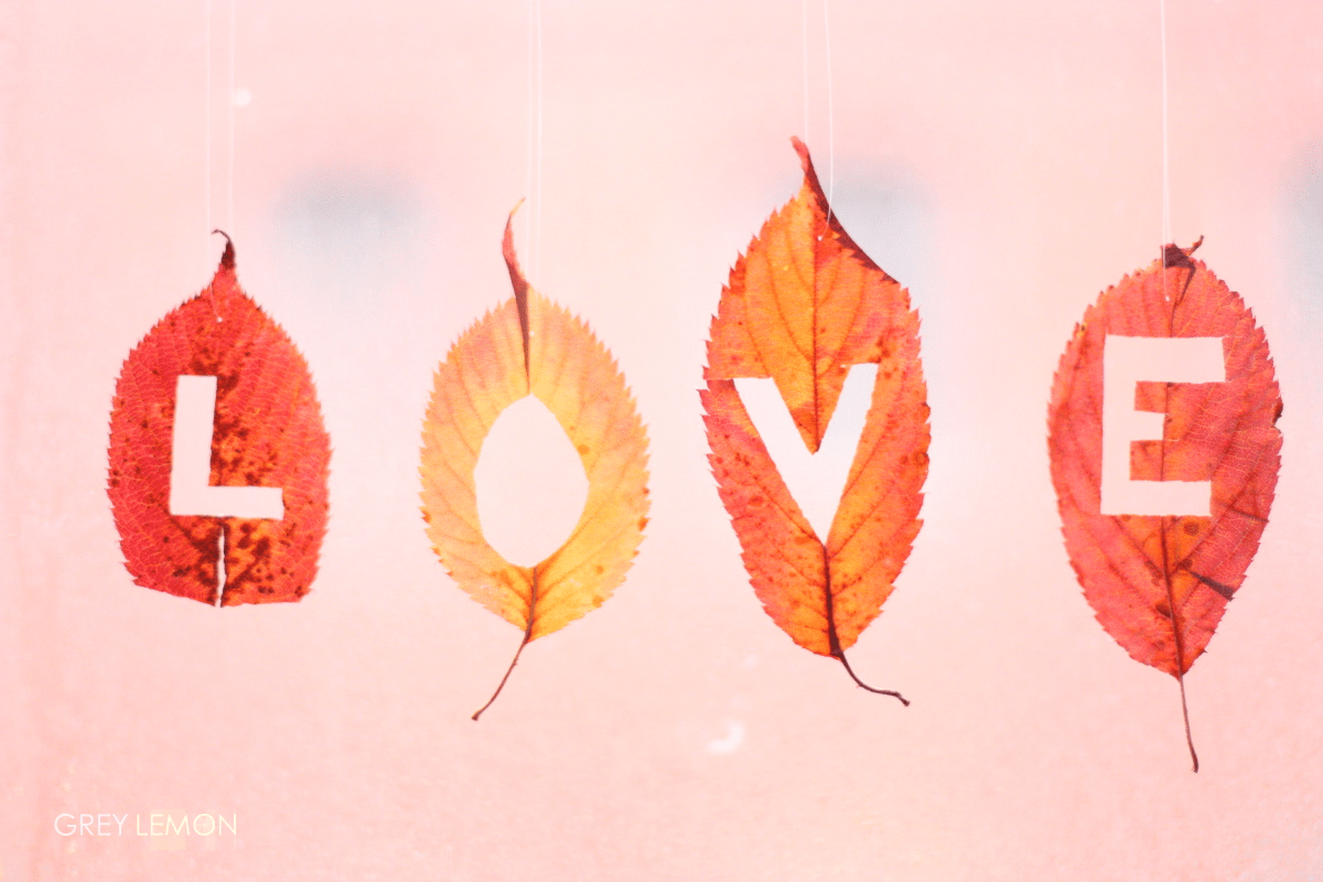 To fall in love  LoveAssociatess Blog