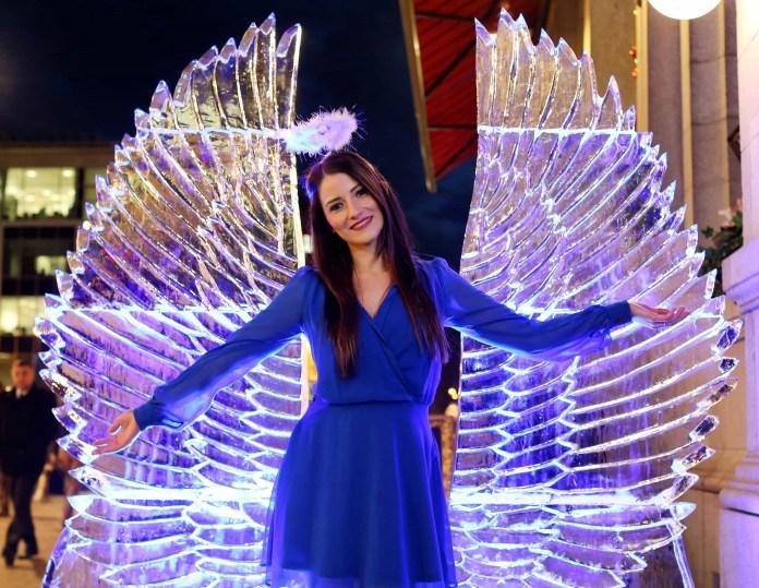Harp Ice Wings 6