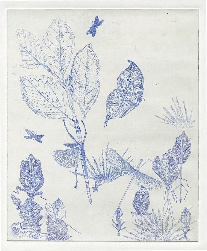 2 leaf-blue72