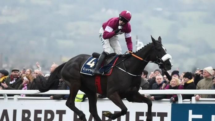 horse racing Belfast
