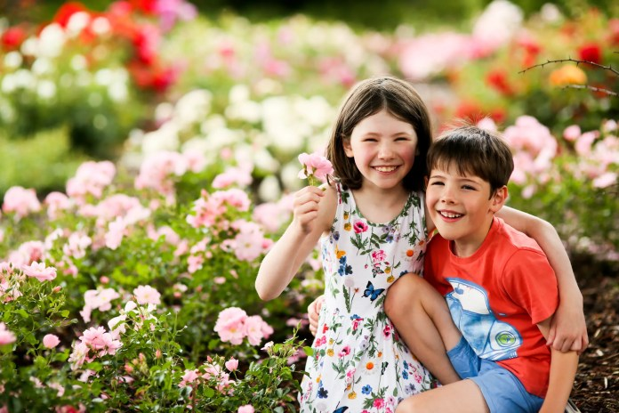 Lady Dixons Summer Rose Fair