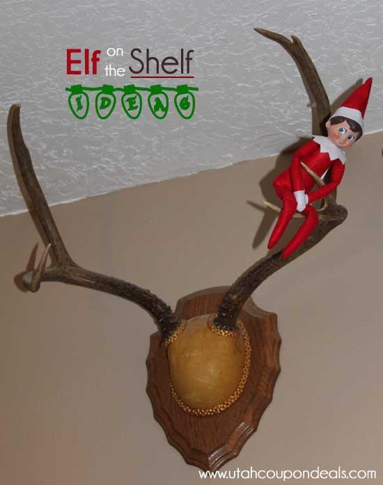 Elf on the Shelf Ideas - Elf in the Antlers