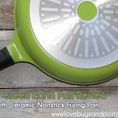 Ozeri Green Earth Pan Review {Smooth Ceramic Nonstick Frying Pan}