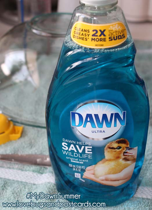 Simplify your summer with Dawn #MyDawnSummer #DDDivas @Dawndish