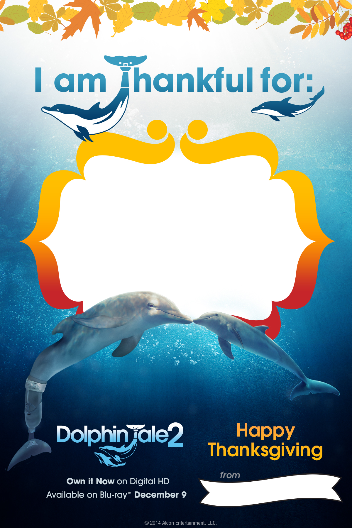 dolphin tale 2 is making a splash dolphintale2 lovebugs and