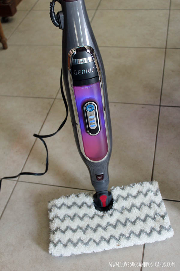 Shark Genius Steam Pocket Mop System Review Lovebugs And