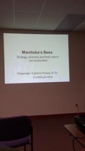 Манитобские пчелы (3)