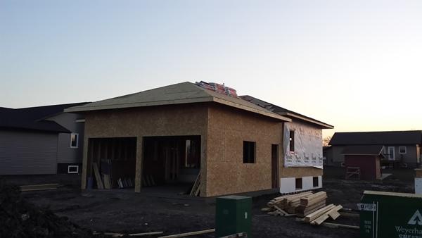 6th week of building (10)