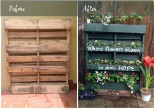 pallet project from internet (2)