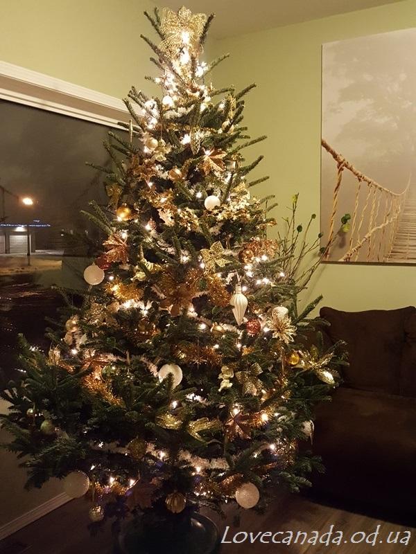 christmas-2016-4