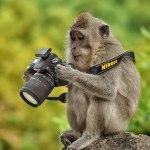 фотограф в канаде