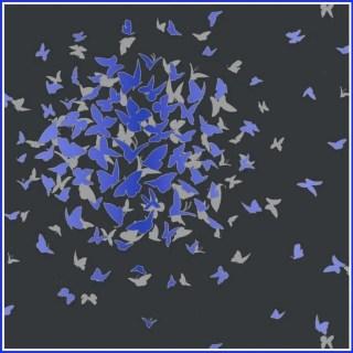 Wallpaper Wednesday: Contemporary Butterflies