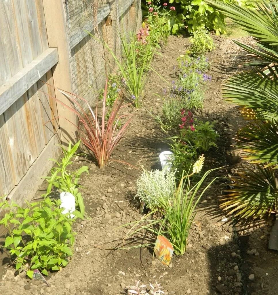 Garden on a roll