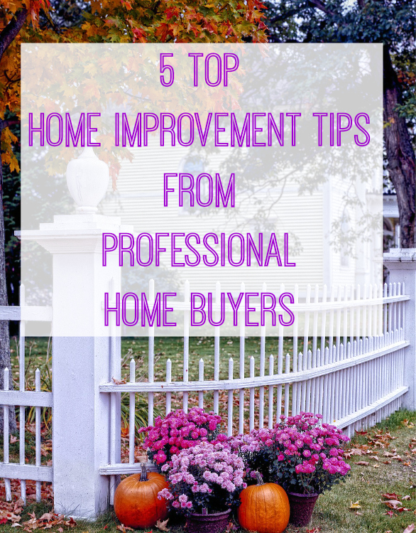5 Top Home Improvement tips from Professional home buyers
