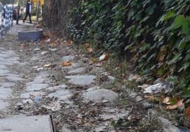 """Текущ ремонт на тротоарни настилки по ул. """"В.Левски"""", Троян"""