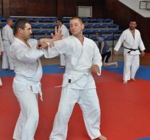 troyan_karate2508131