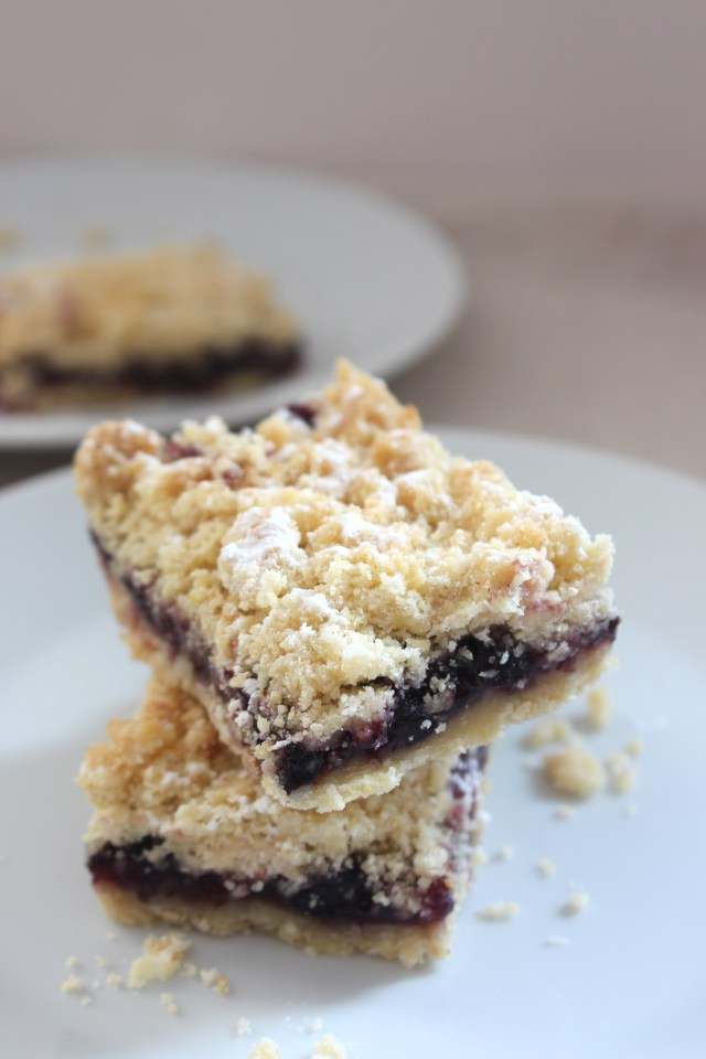 blueberry-bars4