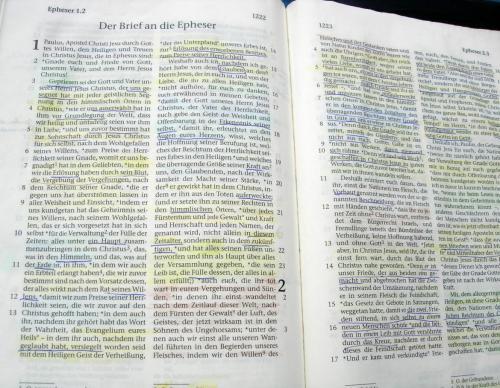 nu17 Bibel