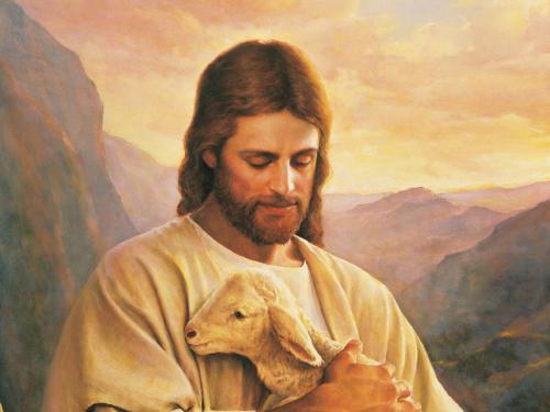 nu17 Jesus carries sheep