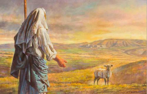 nu17 the-lost-lamb-barrett