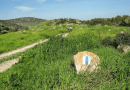 ✡ Retrace the steps of Avraham ✡ – Israel365