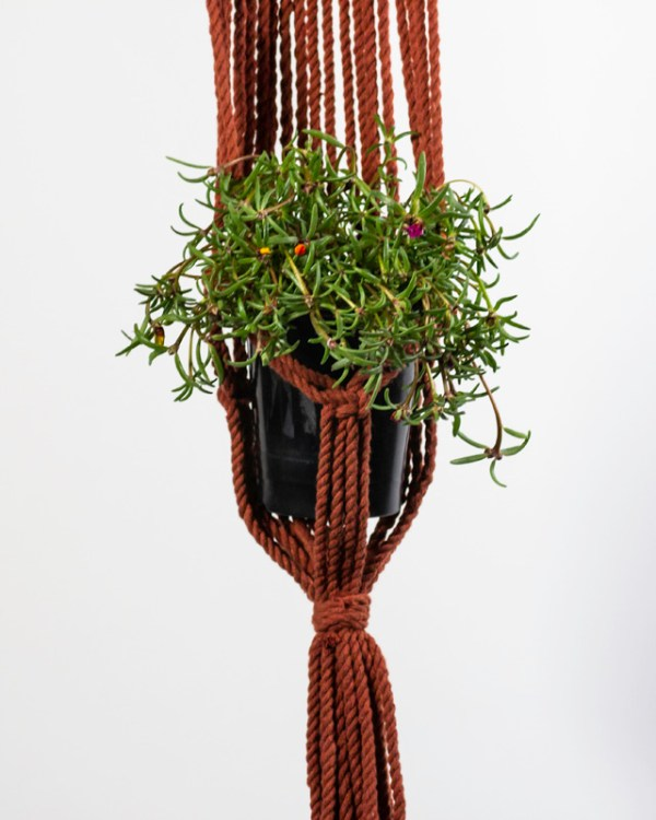Mombacho Macrame Plant Holder Tile Red Made in Nicaragua