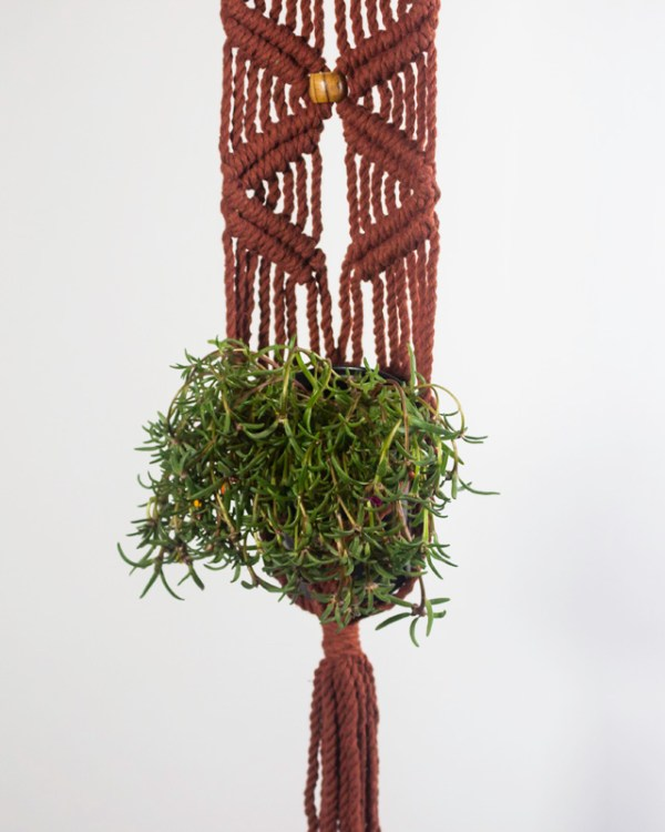 Somoto Macrame Plant Holder Tile Red Made in Nicaragua
