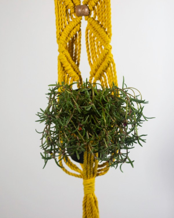 Somoto Macrame Plant Holder Yellow Made in Nicaragua