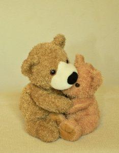 teddy-1112568_960_720