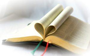 book-506481_960_720