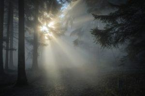 winter-sun-1547273_960_720