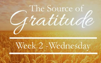 Living gratitude in the midst of your imperfect story…