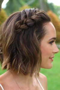 Braided Short Hairstyles picture2