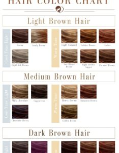 What shade of brown hair color chart is the best for you brunette brownhair also shades to suit any complexion rh lovehairstyles