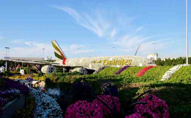 Dubai Miracle Garden, one of the top things to do in Dubai.