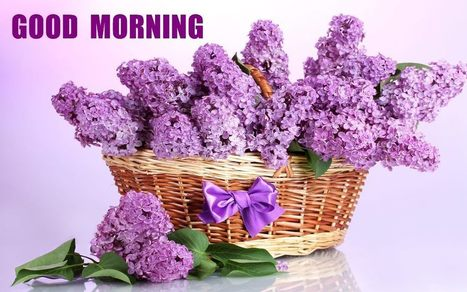 Good Morning Flowers