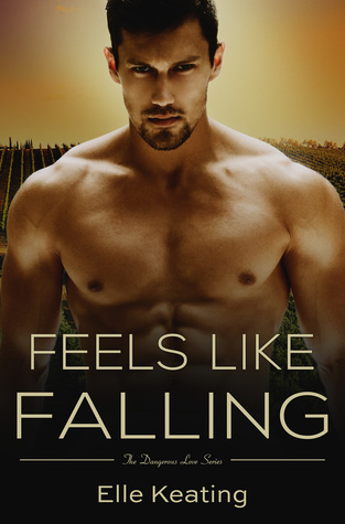 Review, Excerpt, Playlist, & Giveaway: Feels Like Falling by Elle Keating