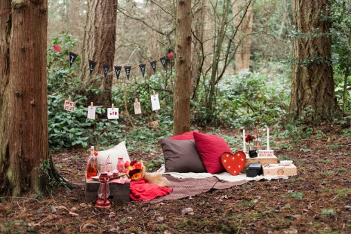 Valentine's Day Picnic Inspiration | Photography by Emily Louise Photography